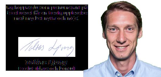 Tobias Ljung Excelbrevet