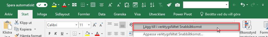 snabbknapp Excel