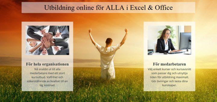 office 365 online kurs