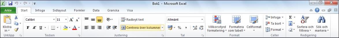 Excel 2010 programfönster gränssnitt